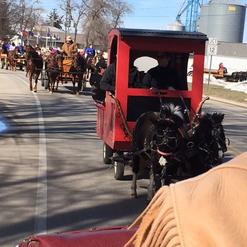 Sleigh and Cutter Parade, Waseca